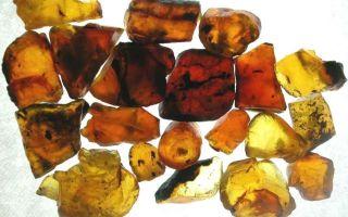 Камень янтарь и его магические свойства: фото и классификация по цветам, кому он подходит
