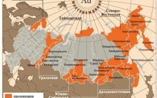 Особенности добычи золота в России — расположение залежей и крупнейшие золотодобывающие компании страны