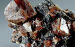 Циркон: основные свойства камня, фото, интересные факты и историческая справка