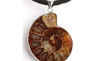 Древний камень аммонит: происхождение, лечебные и магические свойства, украшения из аммонитов