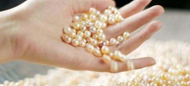 Культивированный жемчуг: способы выращивания и отличия камней