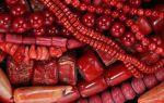 Магические свойства красного коралла – фото таинственного камня