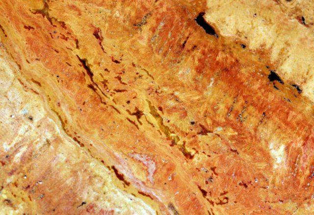 Природный камень оникс свойства имеет уникальные: применение оникса и описание. Черный оникс и белый оникс с фото: где что используется